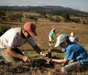 Image for Murrumbateman Landcare