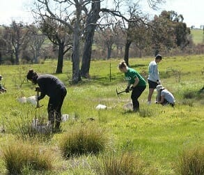 Image for ANU Intrepid Landcare